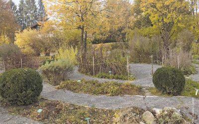 Teelabyrinth